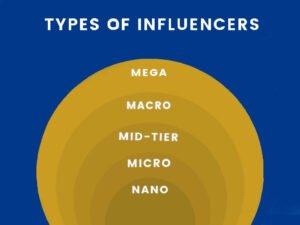 pie-chart-showing-different-types-of-influencers-byname-and-follower-count